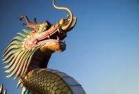 区块链创业公司Dragonchain已经启动完成1370万美元的ICO